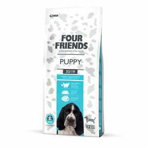 FourFriends Puppy