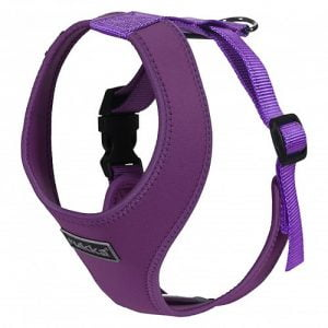 Rukka Comfort Mini Harness